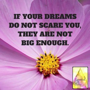 IF YOUR DREAMS DO NOT SCARE YOU,THEY ARE NOT BIG ENOUGH.
