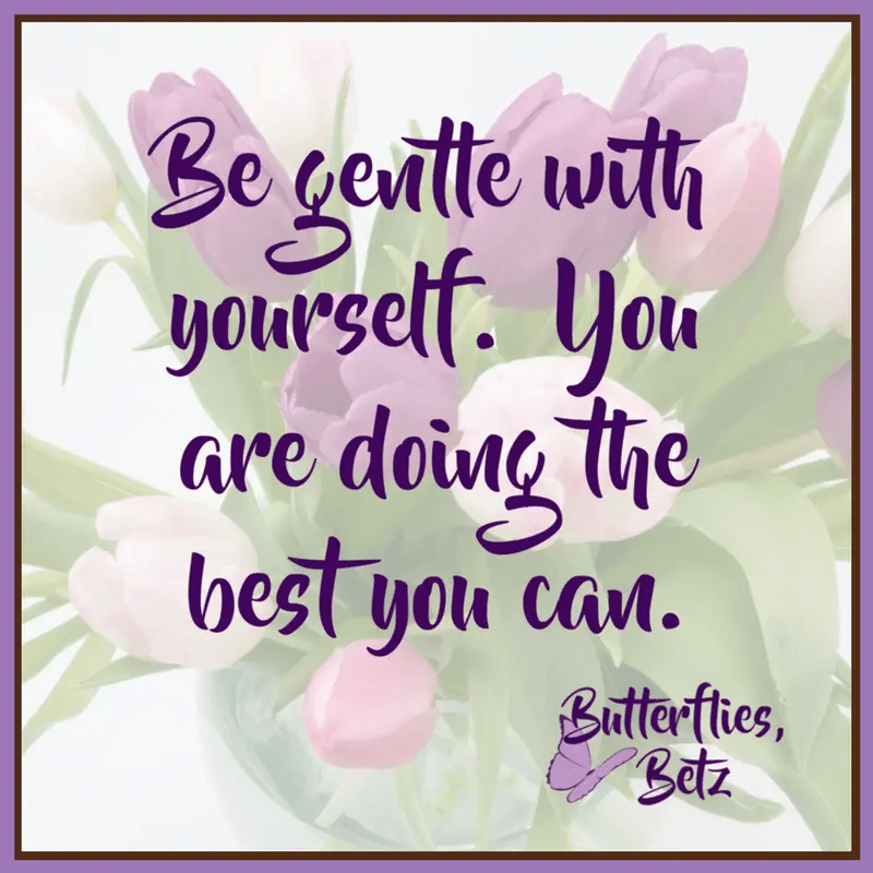 Quote: Be gentle with yourself. You are doing the best you can.