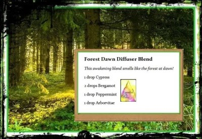 This awakening blend smells like the forest at dawn!!!