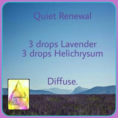 Quiet Renewal Diffuser Blend