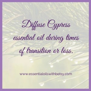 Diffuse Cypress essential oil during times of transition or loss.