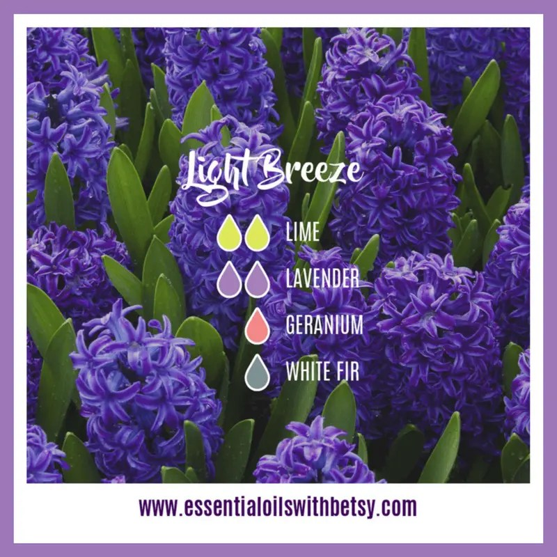 Light Breeze Diffuser Blend 2 drops of Lime 2 drops of Lavender 1 drop of Geranium 1 drop of White Fir