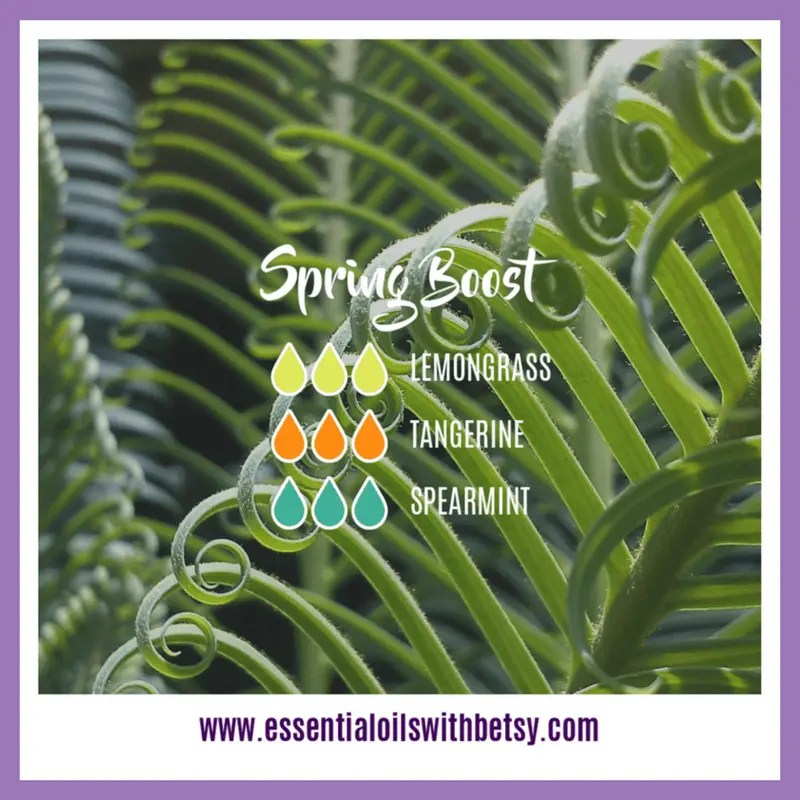 Spring Boost Diffuser Blend 3 drops of Lemongrass 3 drops of Tangerine 3 drops of Spearmint