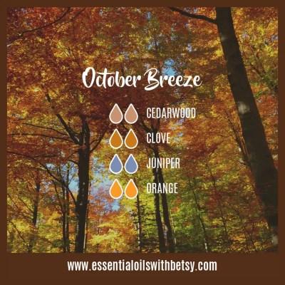 October Breeze Fall Diffuser Blend: Cedarwood, Clove, Juniper, Orange