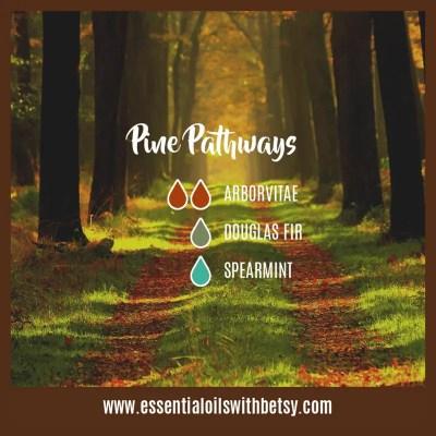 Pine Pathways Diffuser Blend: Arborvitae, Douglas Fir, Spearmint