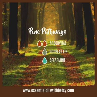 Pine Pathways Diffuser Blend: Arborvitae, Douglas Fir, Spearmint