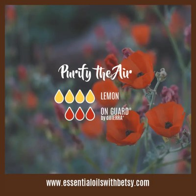 Purify The Air Diffuser Blend Lemon, OnGuard