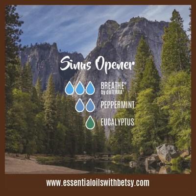 Sinus Opener Diffuser Blend: Breathe, Peppermint, Eucalyptus