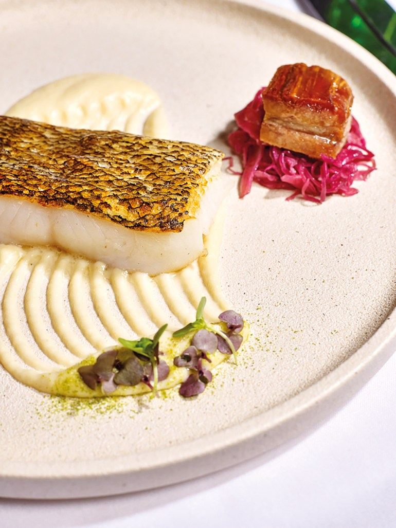 Roasted Glacier 51 Toothfish with pork belly and picked red cabbage
