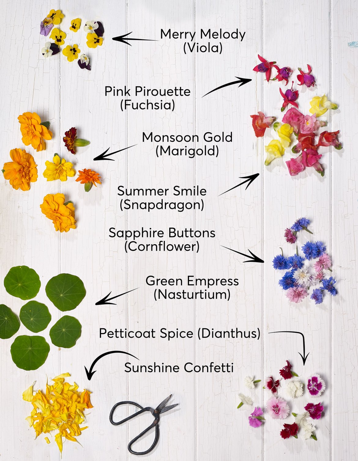 Flowerdale Farm - a guide to edible flowers