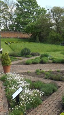 Cressing Temple Walled Garden 2015 (2)