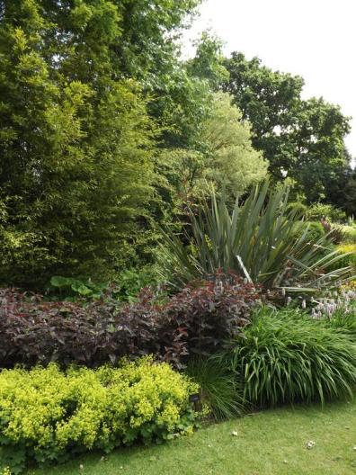 Beth Chatto Gardens (20)