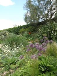 Beth Chatto Gardens (7)