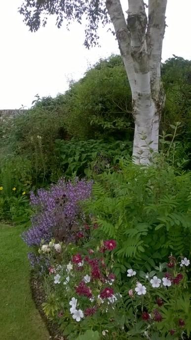 Feeringbury Manor Gardens (7)