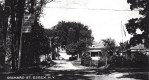 Orchard St. Essex, NY (Vintage Postcard; Shared by Mary Wade)