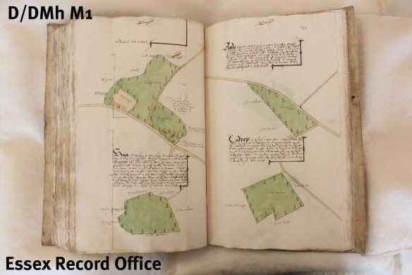 A survey of manor and lordship of Castle Hedingham by Israel Amyce, 1592, using a combination of written descriptions and  maps (D/DMh M1)