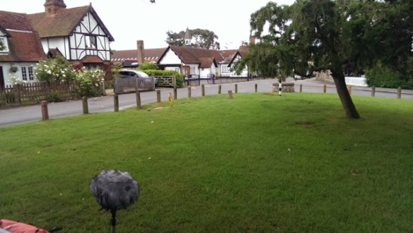 Photograph of Stisted village green with microphone in the foreground