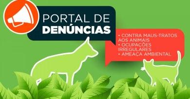 Portal de denúncias a maus-tratos de animais está disponível no site da Prefeitura de Itanhaém