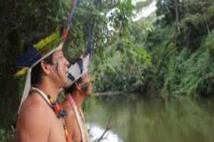 Especial: A imagem projetada dos indígenas em Palmeira dos Índios