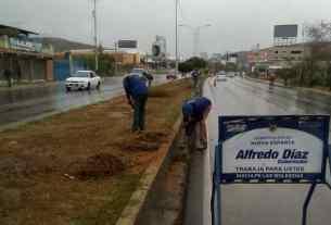 Los hombres y mujeres de Azul, desmalezaron y limpiaron desde el distribuidor de Los Robles hasta la avenida José Asunción Rodríguez, en Conejeros