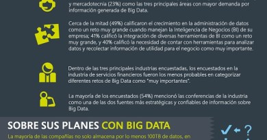 Tendencias Big Data en Empresas Globales 2013