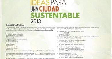 100 ideas 2013