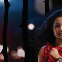 Netflix estrena Lady, La Vendedora de Rosas en exclusiva