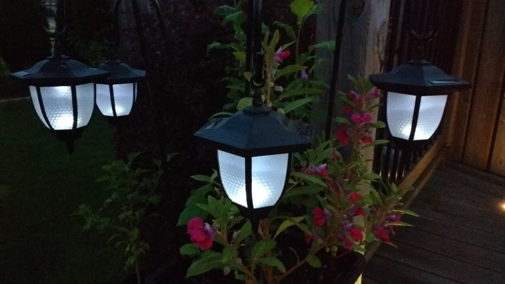 Stunning Lights of Your Backyard Landscape