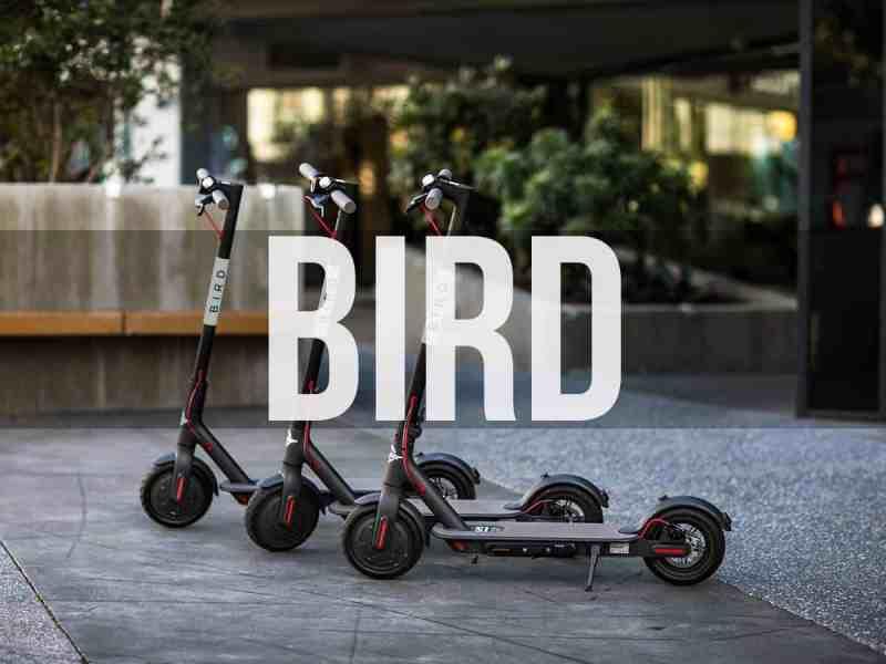 Bird monopattini - corsa gratis 5€ - codice promo P6r1