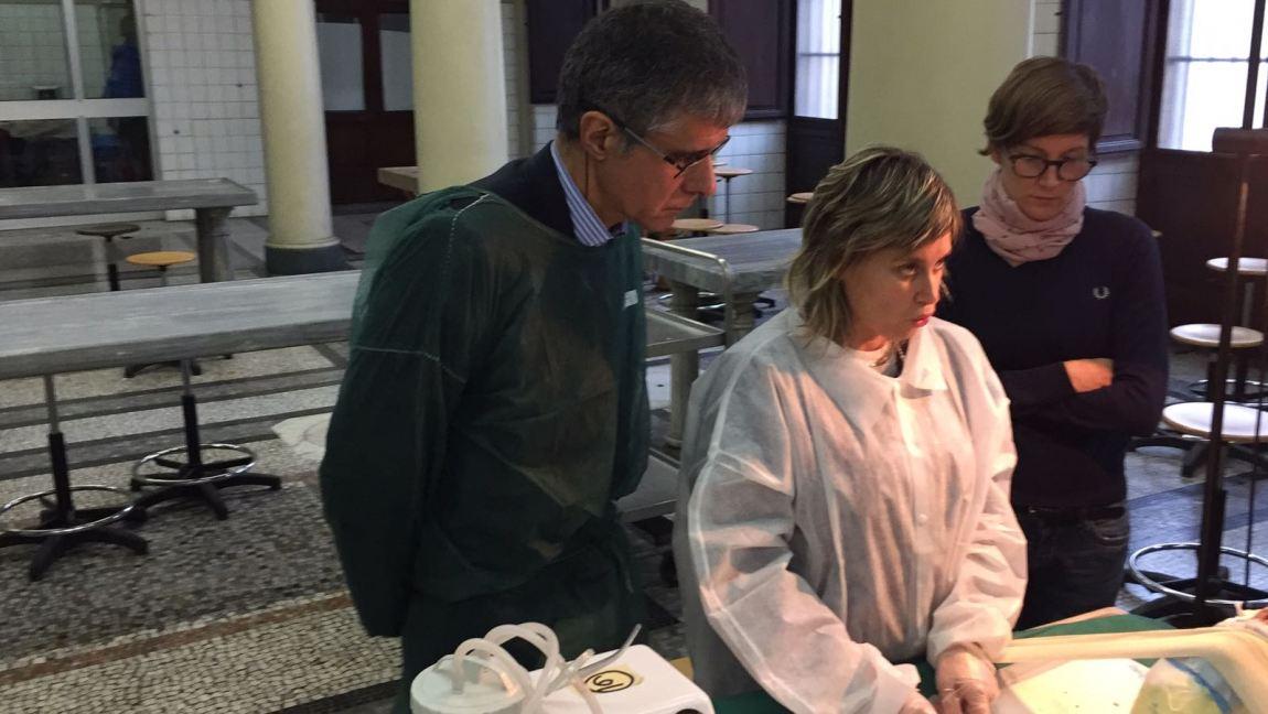 Corso di Anatomia Chirurgica - Dr. Renata Migliardi 2