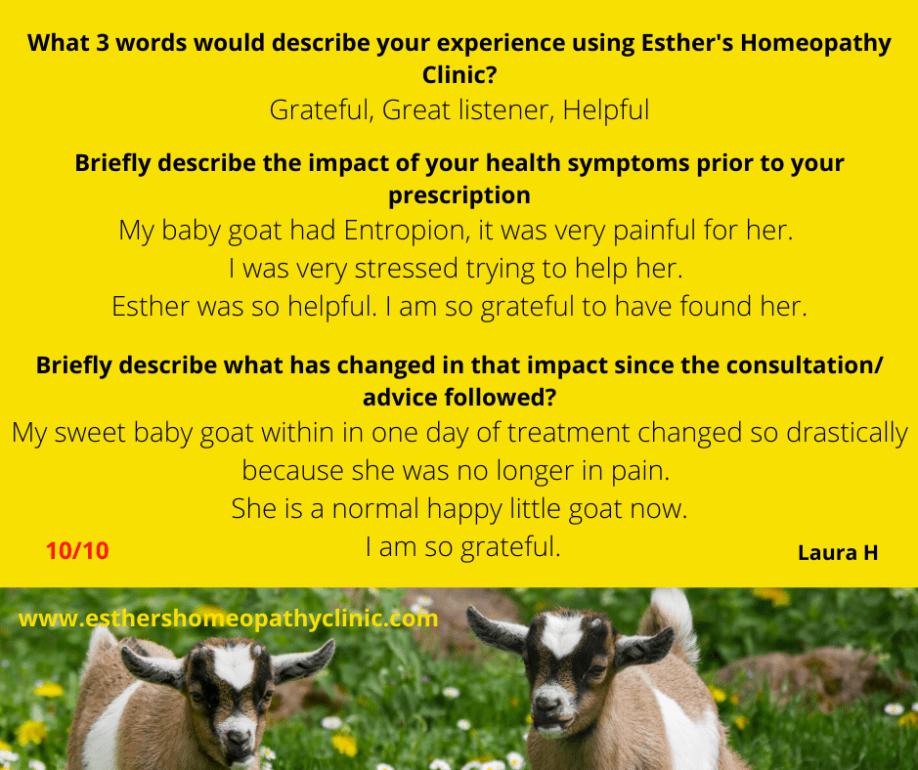Entropion Homeopathy