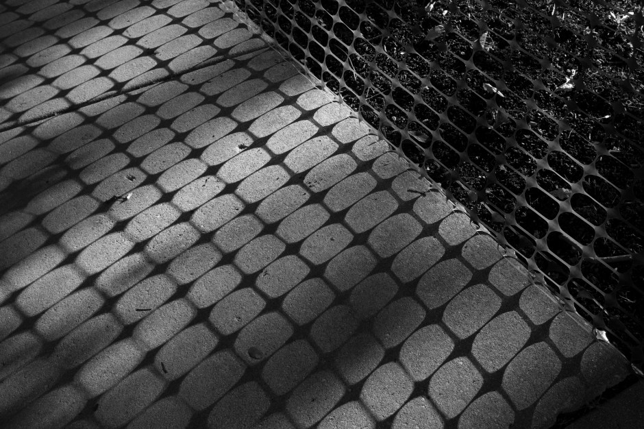 Net_Shadow_©_Dave_Roth