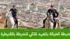 شروط توظيف شرطة الخيالة