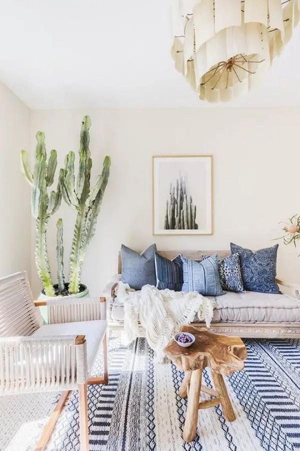 Cactus in the diningroom