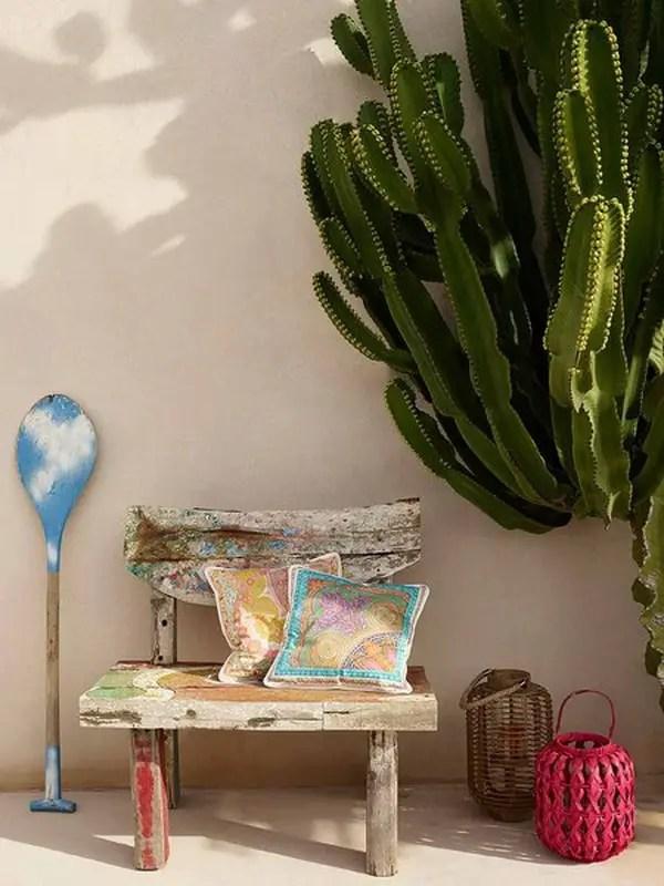 Cactus en recibidores