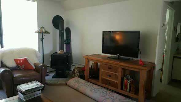 Aspen real estate 070316 144193 1337 Vine Street 1 590W