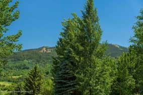 Aspen real estate 082816 144879 351 Meadow Road 6 190H