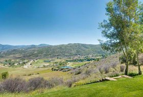 Aspen real estate 091016 144186 300 Oak Ridge Road 8 190H