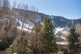 Aspen real estate 120416 138188 1034 E Cooper Avenue 3 A 6 190H