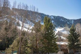 Aspen real estate 120416 138188 1034 E Cooper Avenue 3 A 6 190H