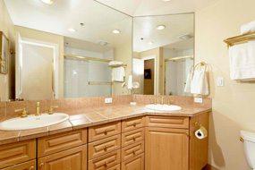 Aspen real estate 121116 145811 900 E Durant Avenue B 105 5 190H