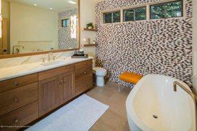 Aspen real estate 011517 145500 311 Park Avenue 5 190H