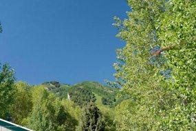 Aspen real estate 020517 145397 228 Cottonwood Lane 6 190H