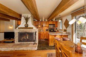 Aspen real estate 040217 141373 1039 E Cooper Avenue 22 3 190H