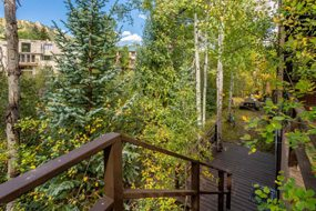 Aspen real estate 073017 146159 550 S Riverside Avenue Unit 4 6 190H