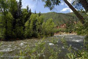 Aspen real estate 081317 125883 80 River Bend Drive 4 190H