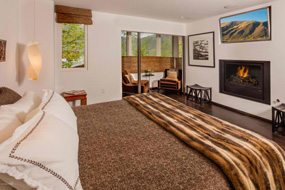 Aspen real estate 082717 149071 342 Summit Street 3 190H