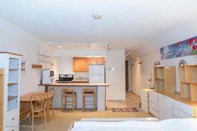 Aspen real estate 091017 149519 1007 Vine Street 3 190H