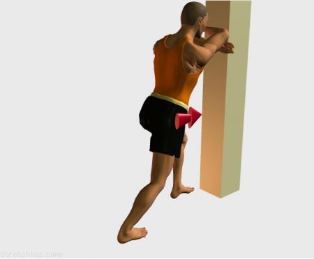 Estiramiento (stretching, streching) recomendado para:  fútbol,  baloncesto,  ciclismo,  atletismo,  senderismo,  snowboard,  squash,  voleibol,  pesas,  natación,  golf,  tenis,  triatlón,  danza,  gimnasia,  correr,  béisbol,  softbol,  balonmano,  kitesurf,  padel,  esgrima,  hockey,  piernas,  gemelo.