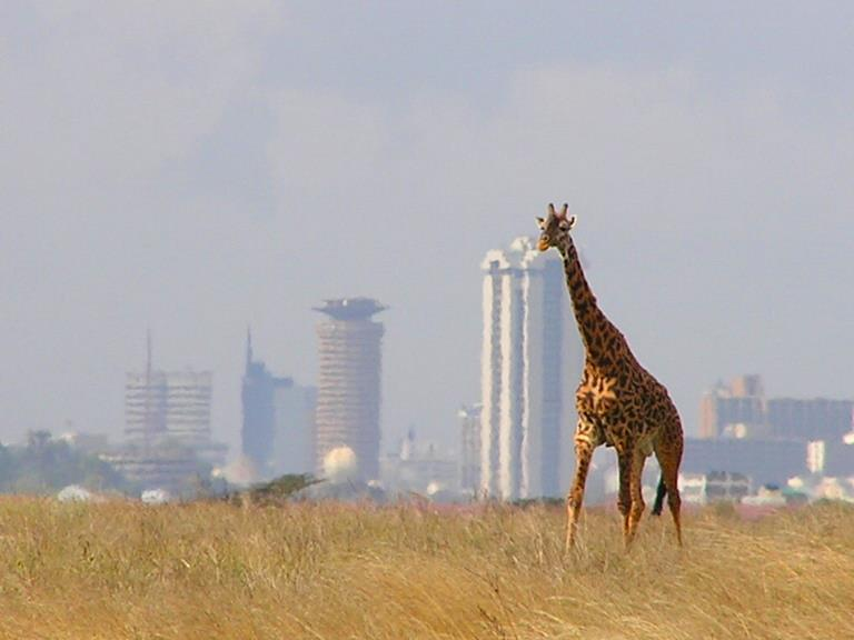 Parks and Beaches-Nairobi National Park